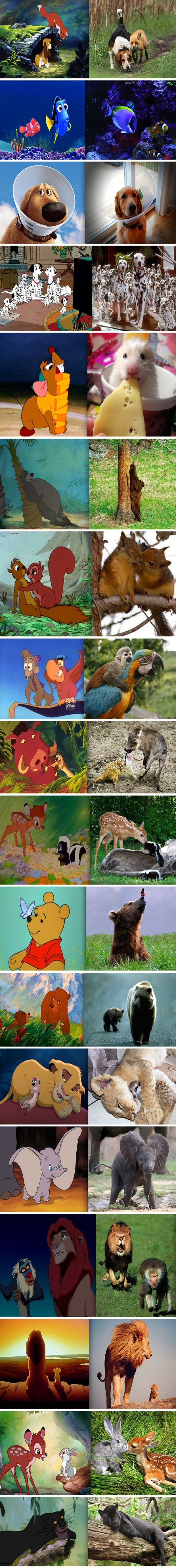 Cartoon/real of Disney scenes happened real life this is what they would look like
