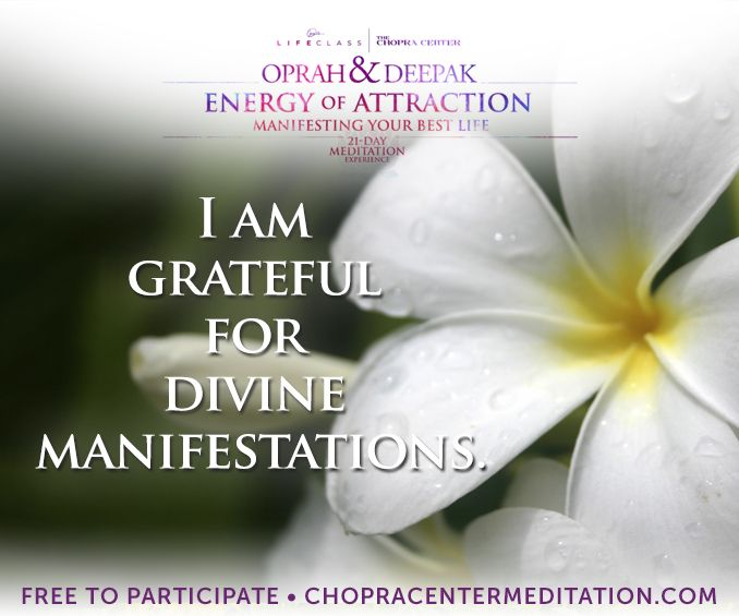Welcome to Day 18 – Manifesting Through Grace. Take moment, right now, to let yourself be filled with gratitude for all the blessings in your life.