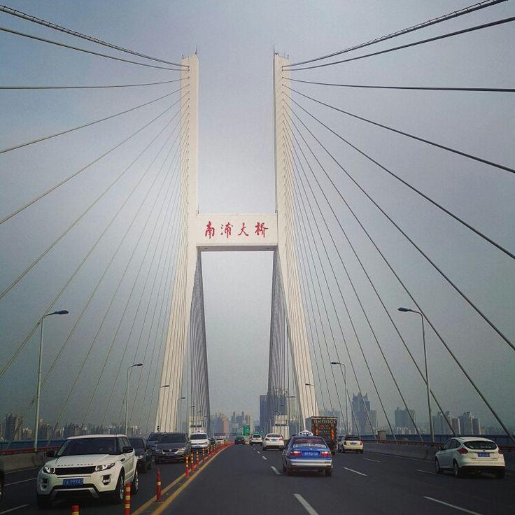Pudong bridge