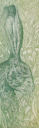 The green hare. David Beattie
