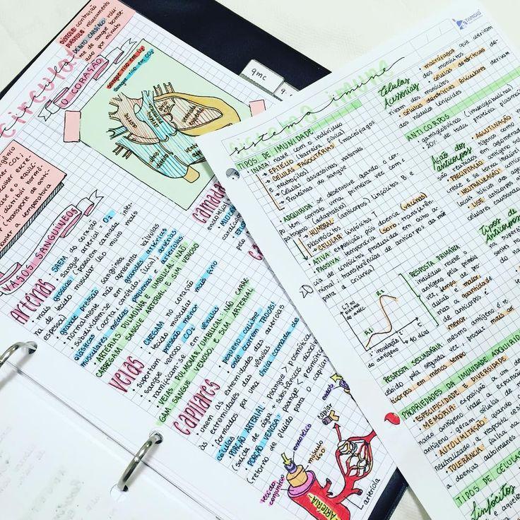 """488 Likes, 19 Comments - #med2017  (@getstudyblrs) on Instagram: """"03.10.2016// anotações de hoje sobre sistema circulatório e imune!    #studynotes #studyhard…"""""""