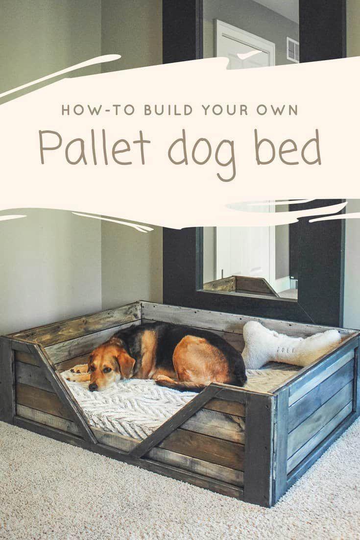 Entdecken Sie, wie Sie Ihr eigenes Palettenhundebett bauen! Dies ist ein perfektes Wochenende Projekt