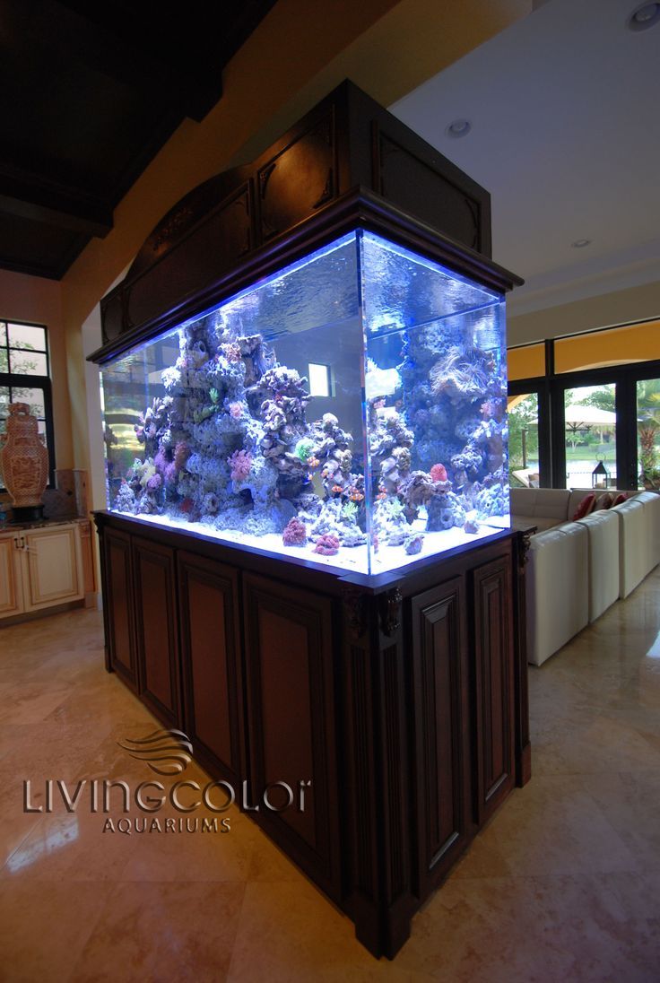 21 best living color aquariums residential images on pinterest