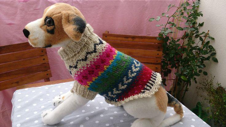 48 best Hund images on Pinterest | Pulli, Haustiere und Haustierkleidung