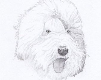 Old English Sheepdog OES Greeting Cards - Gift Set of Eight - Free Shipping US - Original Pencil Art Design - Desert Impressions