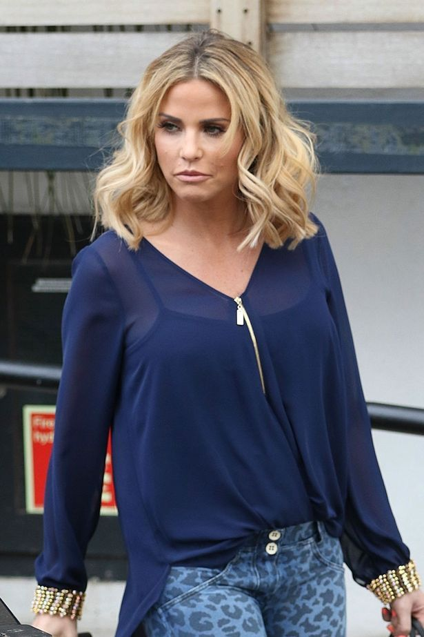 Katie Price is looking for the perfect horse to kick off her career