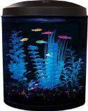 Aquarius Aq35000gpc Glofish 180 3-1/2-Gallon Aquarium Kit