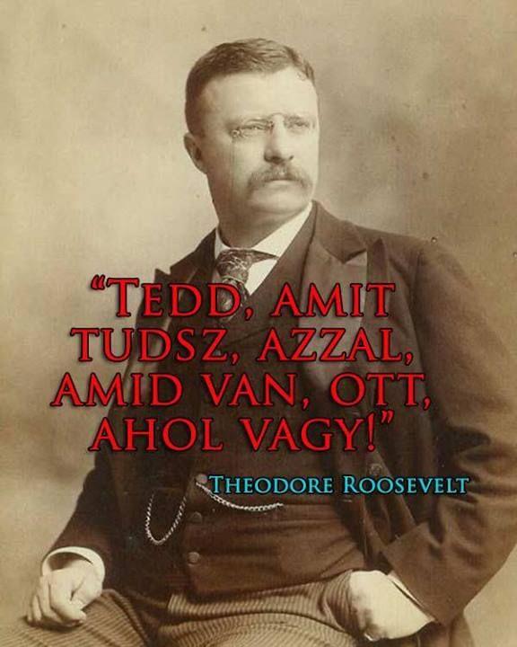 Roosevelt motiváló idézete. A kép forrása: Zentai Anna # Facebook