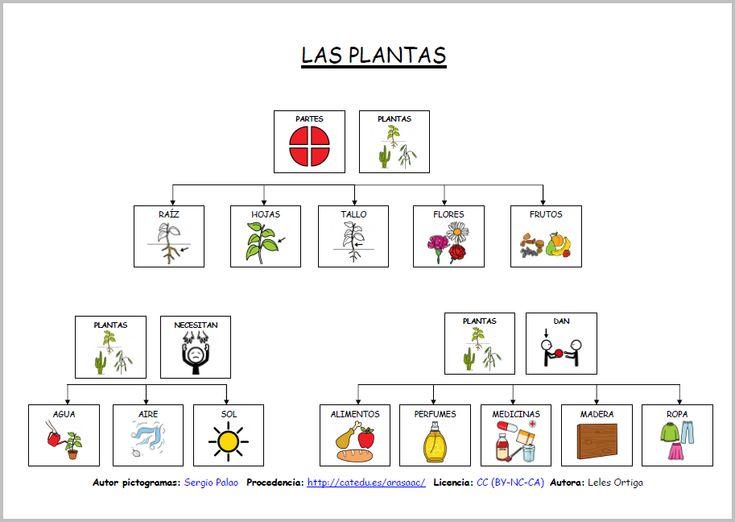 MATERIALES - Las plantas: mapas conceptuales  Mapas conceptuales para trabajar las características y las partes de las plantas. Mapas conceptuales para completar.  http://arasaac.org/materiales.php?id_material=1115