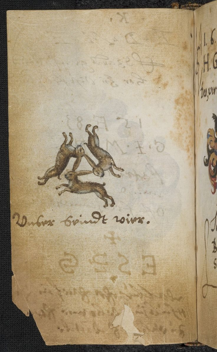 "the familiar 'rabbit/hare trinity' -- here labelled ""Unser seindt vier"" [We are four/there's four of us]. from the album amicorum of Frederick IV of the Palatine [UB Heidelberg, Pal. Ger. 619 -- this is f.47v. entries are dated 1582-1605]. Here we have an interesting association with the motif of the 2 fools who say ""we are three"" -- making the viewer by his/her puzzled inquiry the 3rd! The hare also has traditional associations of folly -- cf. Eng. ""mad as a march hare"""