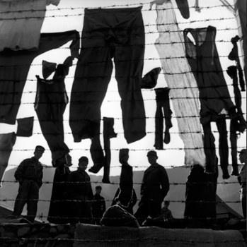 Werner Bischof - Korea, Koje Do, 1952. S)