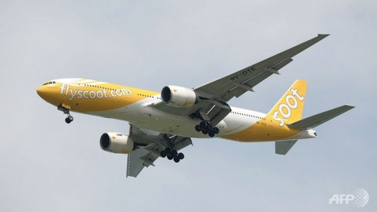 An aircraft of budget airline Scoot, a subsidiary of Singapore Airlines (SIA). (AFP/Roslan Rahman) ▼31May2015ChannelNewsAsia|Scoot flight from Gold Coast delayed for 6 hours due to technical glitch http://www.channelnewsasia.com/news/singapore/scoot-flight-from-gold/1883568.html #Scoot ◆Scoot - Wikipedia http://en.wikipedia.org/wiki/Scoot