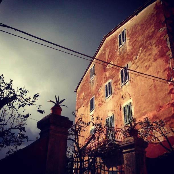 """Brava irenospa che è riuscita, in un solo scatto, a racchiudere il """"freddo"""" e il """"caldo"""" della giornata di ieri.  #borgoagrumi"""