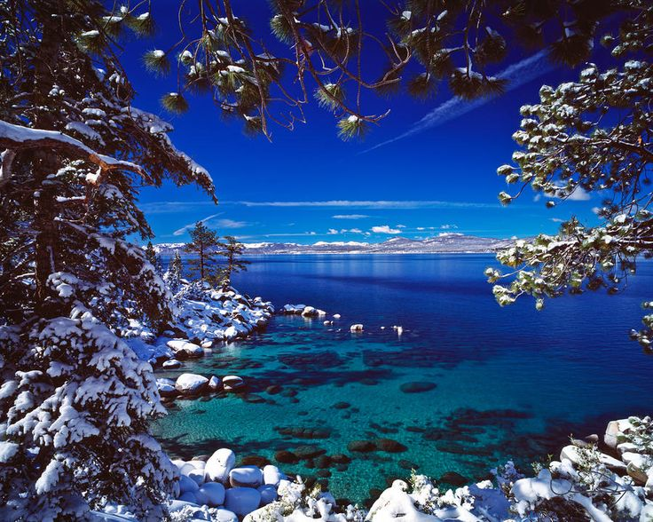 south lake tahoe guys Discover company info on the log guys, inc in south lake tahoe, ca, such as contacts, addresses, reviews, and registered agent bizapedia is the leading internet source for information that many companies want to keep a secret from you.