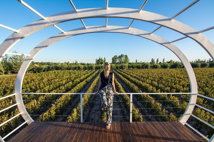 Sip, Savor, Repeat- Entre Cielos Wine Hotel & Spa  www.theroadlestraveled.com