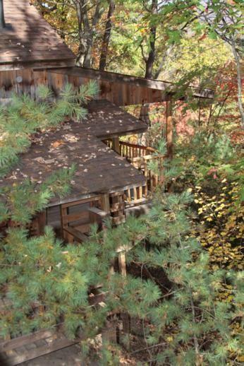 Best 25+ Asheville Nc Cabins Ideas On Pinterest