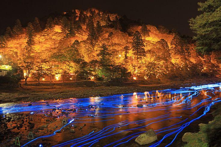 香嵐渓紅葉の下のプラネタリウム