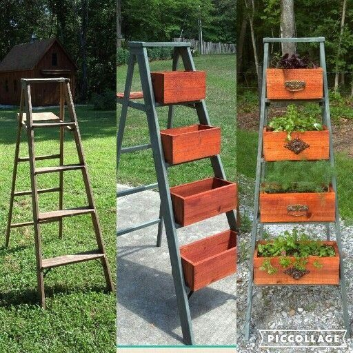 My Latest Project Step Ladder Repurposed Into My Herb Planter 1000 In 2020 Repurposed Ladders Repurposed Planter Garden Ladder