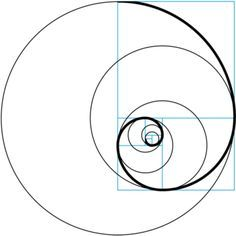 golden ratio - Buscar con Google