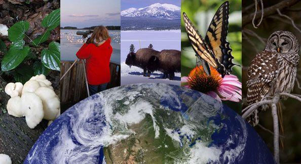 Se considera un ecosistema al medio ambiente biológico que consiste en todos los organismos (biocenosis) de un lugar particular, incluyendo también todos los componentes no vivos (biotopo), los componentes físicos del medio ambiente con el cual los organismos interactúan, como el aire, el suelo, el agua y el sol.