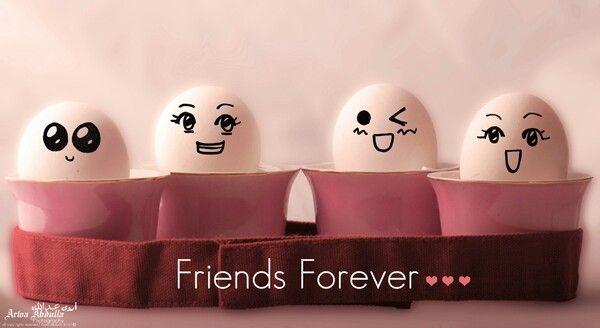 egg frnds party