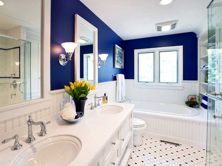 Small Modern Bathroom Design Ideas with blue wall color and glamorous white vinyl wainscoting and marvellous deck