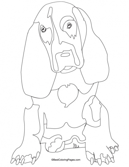 dog basset coloring pages - photo#22