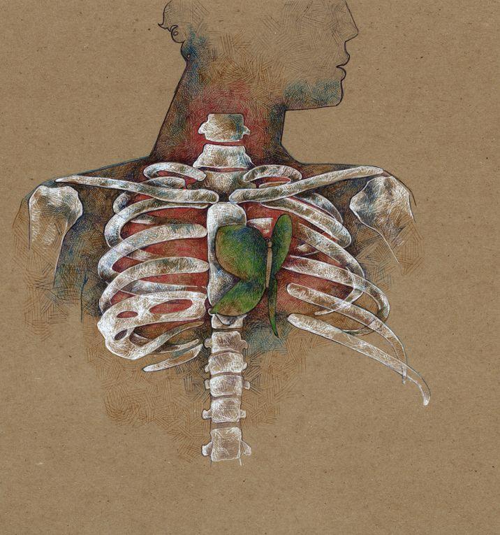 heart-chakra-butterfly-skeleton-art-drawing.jpg