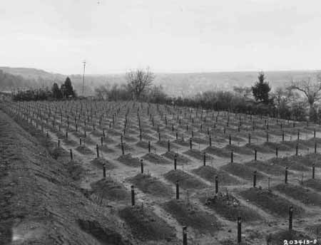 """Cemetery at Hadamar where victims of """"euthanasia"""" at the Hadamar """"euthanasia"""" killing center were buried. This photograph was taken toward the end of the war. Hadamar, April 1945."""