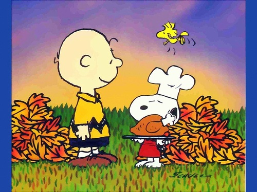 love. {{ #Thanksgiving }}: Peanut, Happy Thanksgiving, Quote, Dinners, Christmas, Charli Brown, Charliebrown, Brown Thanksgiving, Charlie Brown