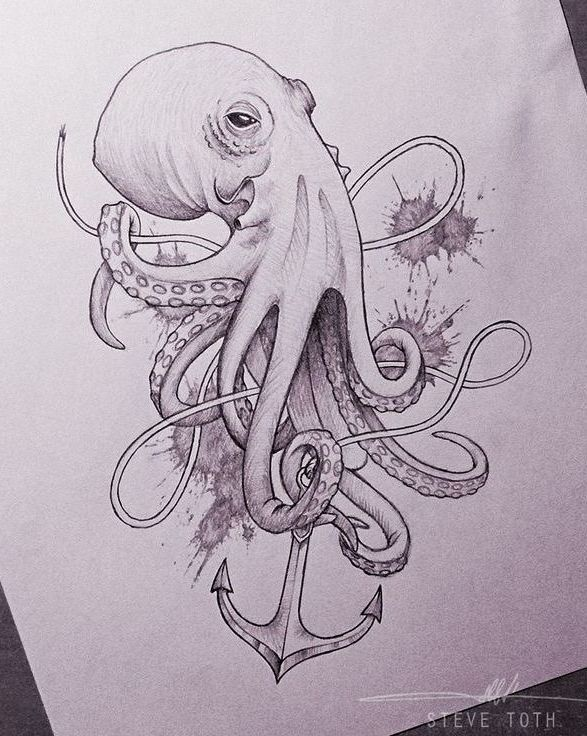 The 25 best Octopus tattoo design ideas on Pinterest Octopus