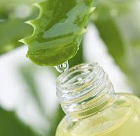 DIY Aloe-Coconut Leave-In Conditioner  How to make: Add 1 cup of aloe juice with 1 cup of fresh natural coconut juice/water. Add in 1/4 cup of water and about 10 drops of jojoba oil. Pour the mixture in spray bottle and shake well for mixing all ingredients. How to use: After shampoo or conditioner towel dry hair and apply the mixture to damp hair. Comb thoroughly for even spreading and style as usual.