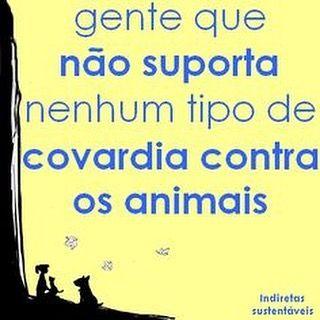 Eu nao suporto nenhum tipo de covardia e maus tratos contra animais.