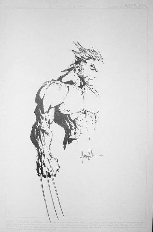 michael turner wolverine sketch 2