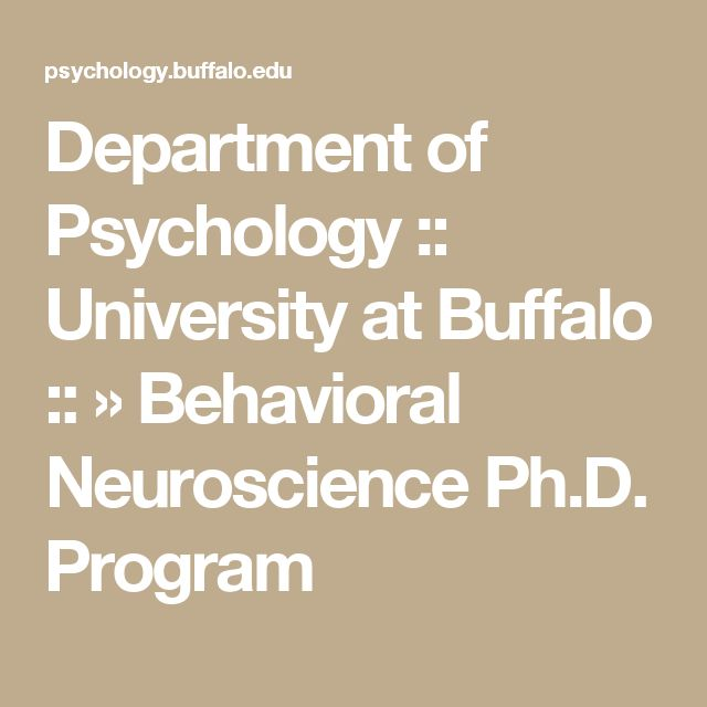 Department of Psychology :: University at Buffalo :: » Behavioral Neuroscience Ph.D. Program