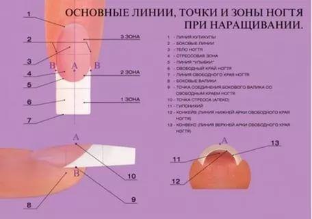 опил ногтей: 22 тыс изображений найдено в Яндекс.Картинках