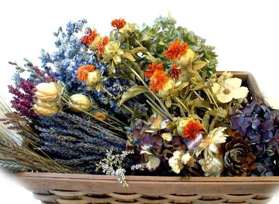 The Everlasting Garden: Easy Tips for Drying Flowers