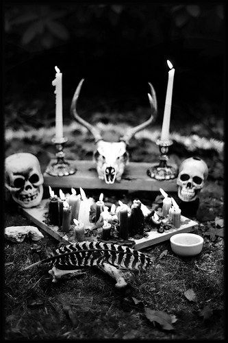 alter, shrine, animal skull, candals, feather, nature, black and white photography