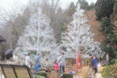 いま箱根ガラスの森美術館に恋人をイメージした本のツリーが設置されているんですよ 本のツリーの高さは約メートルと約メートル この高さの差が本当に恋人がよりそってる姿みたいだね() 日光を反射してキラキラ輝く姿はとっても素敵( 来年月日まで展示されているから行ってみてね (    )ノ tags[神奈川県]