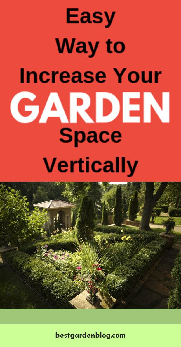 Find More Information On Gardening Tips And Ideas Just Click