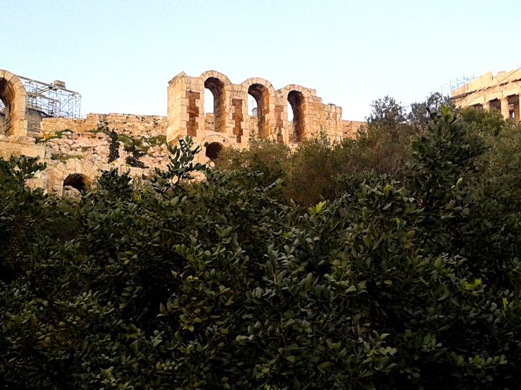 A glimpse of Herod Atticus Odeon through the olive trees on its feet...