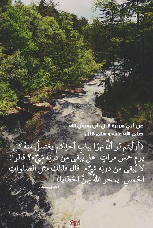 Image Result For Islamic Quotes Bukharia