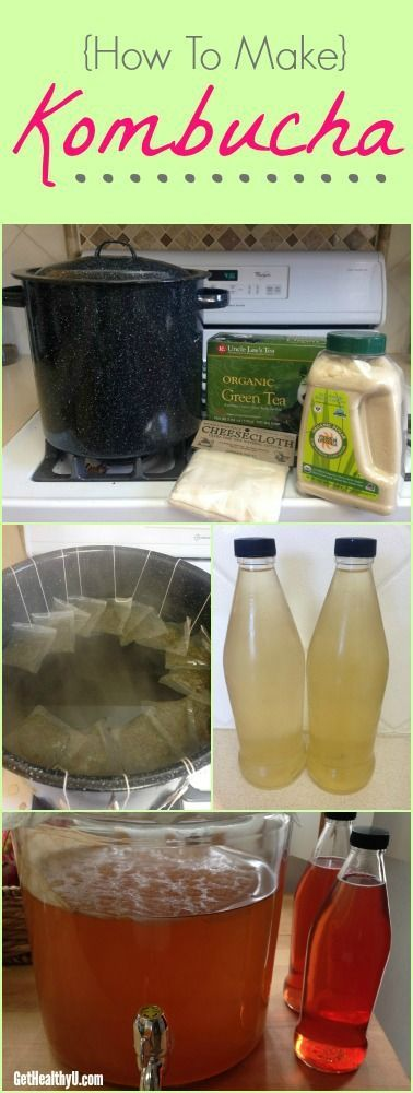 Team Get Healthy U is obsessed with Kombucha! This healthy fermented tea has tons of health benefits. Save $$ and make your own with this recipe.
