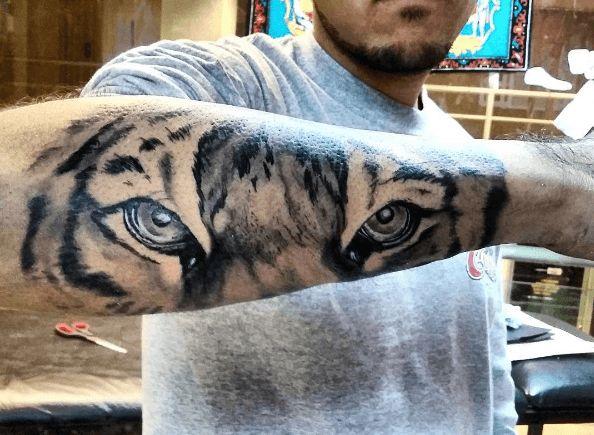 Tatouage bras tigre regard