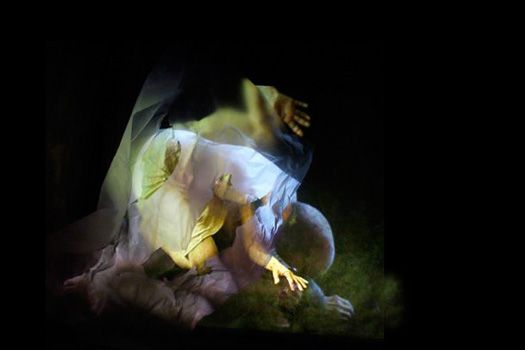Sarah Bliss, The Poetics of Skin (2012)   Archival pigment print. Still from video installation. Image credit: Rosalyn Driscoll.