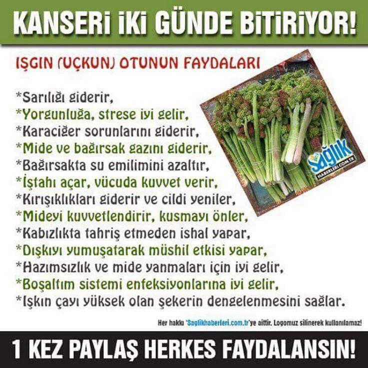Mehmet Dogru - Google+