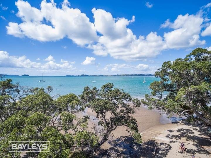 Buckleton Beach, Tawharanui Peninsula