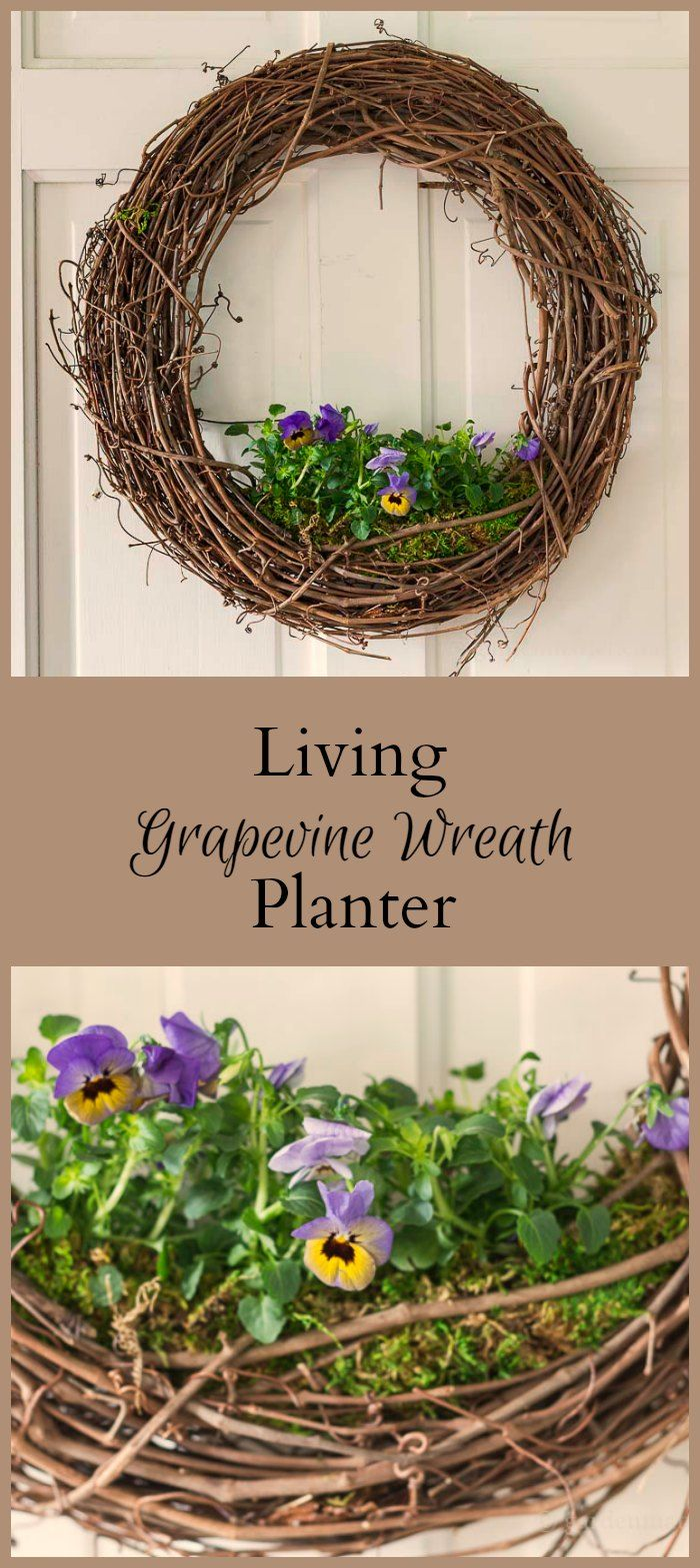 This tutorial for a living floral grapevine wreath is simple and straightforward. Just a few materials make a beautiful statement for your front door.