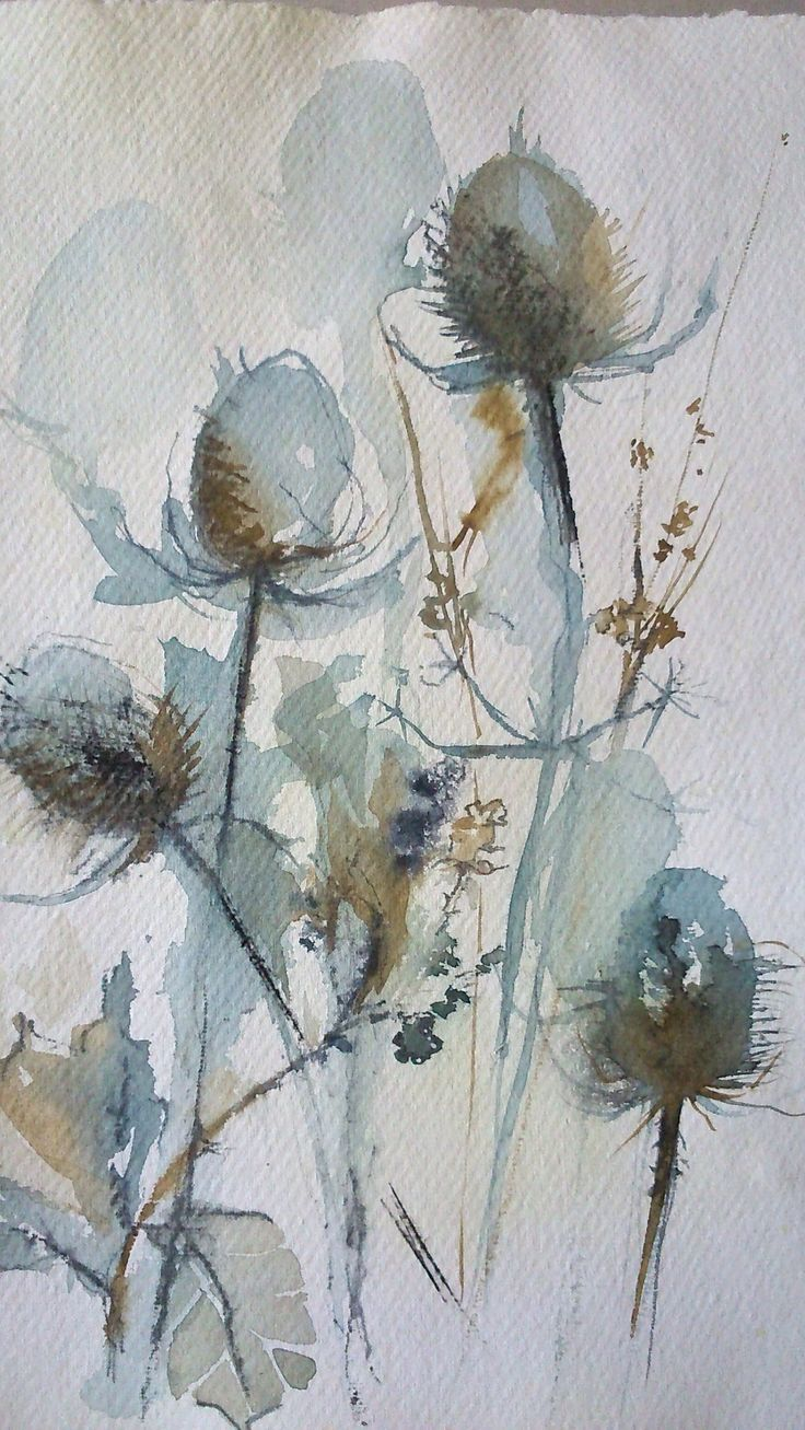 Sally Wyatt | Wychwood Art | This uplifting little treasure of winter - teasles. Sally will be describing how she has changed career later on in life and has become an artist during an interview with The Daily Telegraph in March 2015. We will keep you updated.
