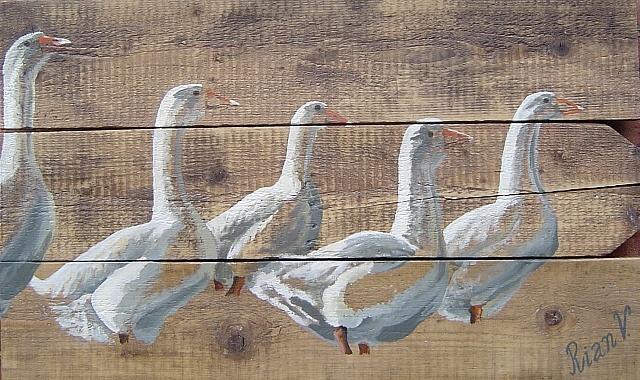 Groep ganzen